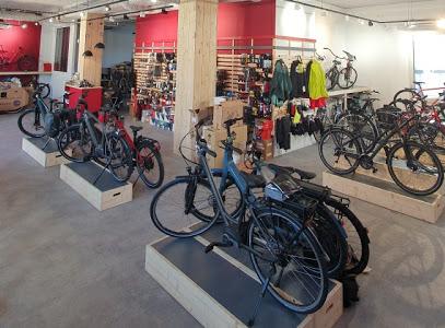 Intérieur magasin de vélos Dijon
